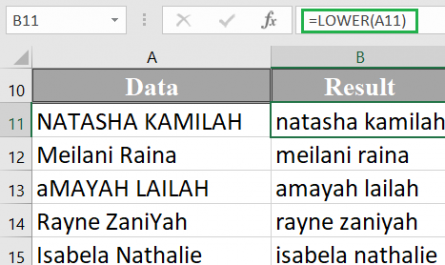 Excel LOWER function 1 445x265 - How to use the Excel LOWER function
