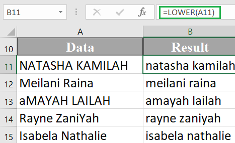 How to use the Excel LOWER function