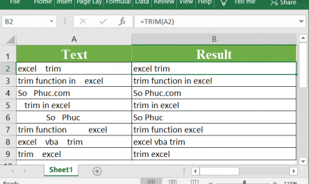 Excel TRIM Function 1 445x265 - How to use the Excel TRIM function