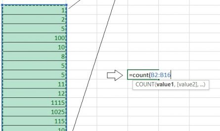 excel count 445x265 - How to count cells in excel