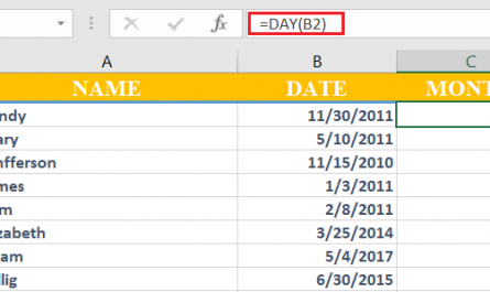 excel day 445x265 - How to use Day function in excel
