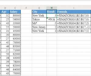 How to use XMATCH Function in Excel